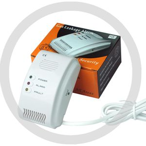 gas alarm 220V power